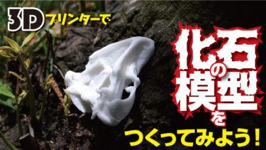 3Dプリンターで化石の模型をつくってみよう!