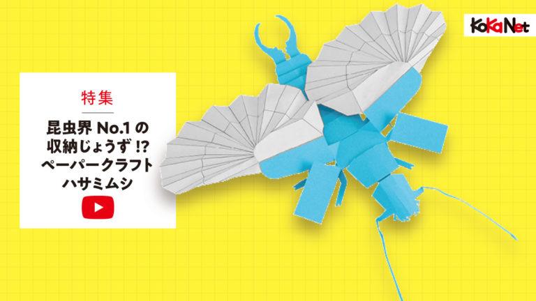 【ハサミムシ】1200×675px