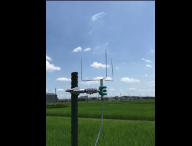 新開発! 野外でも日よけナシで正確な気温が測れる「三球温度計」とは?