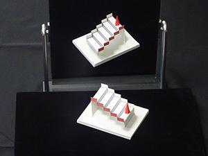 「錯覚道」師範・杉原厚吉先生が世界錯覚コンテストで4度目の世界一!