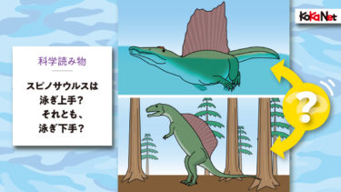 スピノサウルスは泳ぎ上手? それとも、泳ぎ下手?