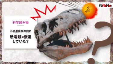 小惑星衝突の前に、恐竜類は衰退していた?