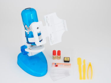 スマホで観察できる顕微鏡プレゼント!