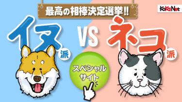 「イヌ派vsネコ派」最高の相棒決定選挙スペシャルサイト