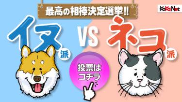 「イヌ派vsネコ派」最高の相棒決定選挙投票ページ