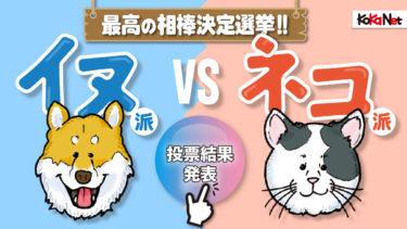 「イヌ派vsネコ派」最高の相棒決定選挙《投票結果&プレゼント当選者発表》